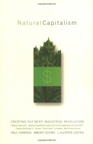 The best books on Change in America - Natural Capitalism by Amory Lovins, L. Hunter Lovins & Paul Hawken