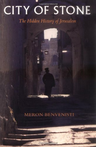 The best books on Divided Cities - City of Stone by M Benvenisti