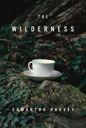 The best books on Mental Illness - The Wilderness by Samantha Harvey
