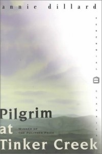 The best books on Silence - Pilgrim at Tinker Creek by Annie Dillard