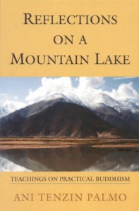 The best books on Silence - Reflections On A Mountain Lake by Ani Tenzin Palmo