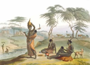 The best books on Puppeteering - African Scenery and Animals by Samuel Daniell