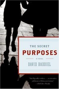 The best books on Football - The Secret Purposes by David Baddiel