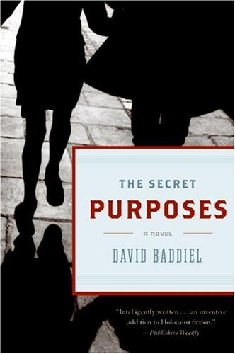 The best books on Football - The Secret Purposes by David Baddiel