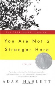 The best books on Evil - You Are Not A Stranger Here by Adam Haslett
