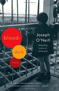 The best books on The Troubles - Blood-Dark Track by Joseph O'Neill