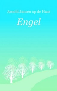 The best books on A Poet Soldier's View of Bosnia - Engel by Arnold Jansen & Arnold Jansen op de Haar