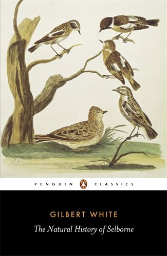 The best books on Spiders - The Natural History of Selborne by Gilbert White