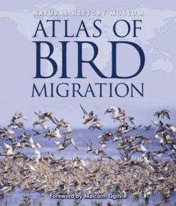 The best books on Birds - Atlas of Bird Migration by Jonathan Elphick & Jonathan Elphick (editor)