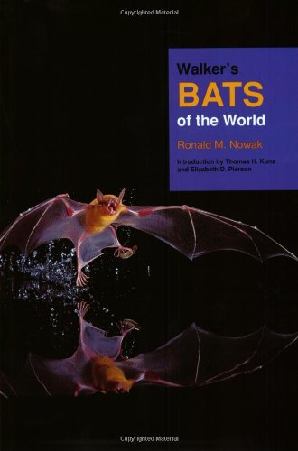 The best books on Bats - Walker's Bats of the World by R M Nowak