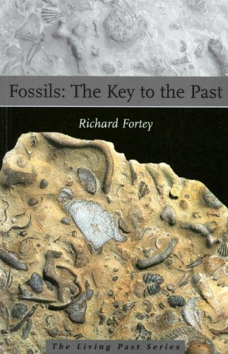 The best books on Palaeontology - Fossils by Richard Fortey
