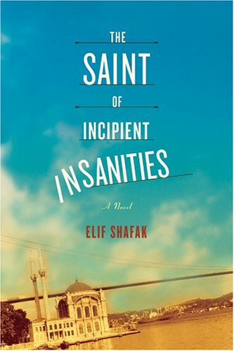 The best books on Turkey - The Saint of Incipient Insanities by Elif Shafak