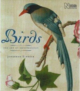 The best books on Birds - Birds by Jonathan Elphick