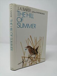 The best books on Summer - The Hill of Summer by J A Baker