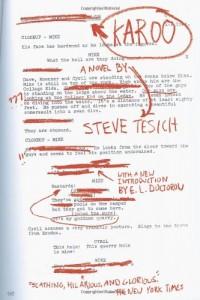 The best books on Filmmaking - Karoo by Steve Tesich