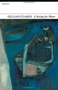 The best books on Poetry - Recipe for Water by Gillian Clarke