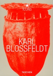 The best books on Garden Photography - Karl Blossfeldt (TASCHEN Icons Series) by Hans Christian Adam