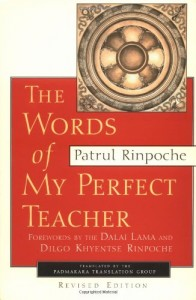 The best books on Buddhism - Words of My Perfect Teacher by Patrul Rinpoche