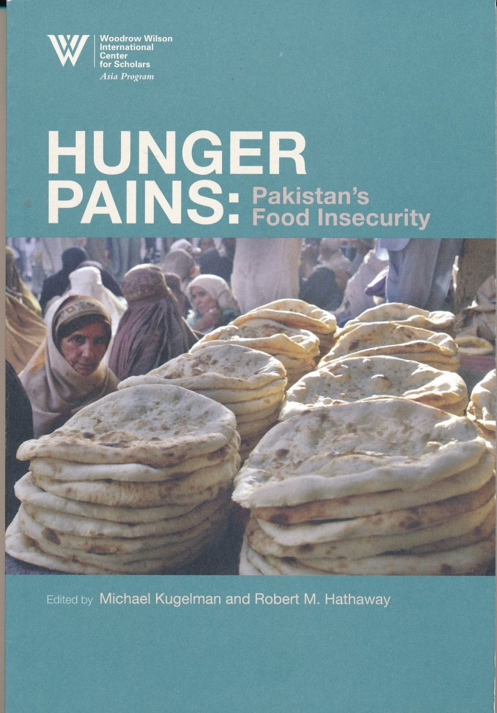 The best books on Reform in Pakistan - Hunger Pains by Michael Kugelman and Robert M Hathaway (editors)