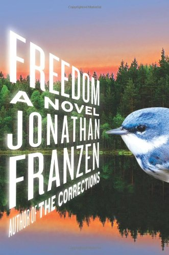 The best books on Dutch Women (and Happiness) - Freedom by Jonathan Franzen