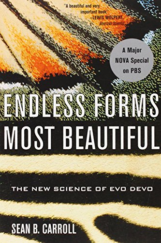 The Best Biology Books - Endless Forms Most Beautiful by Sean B Carroll