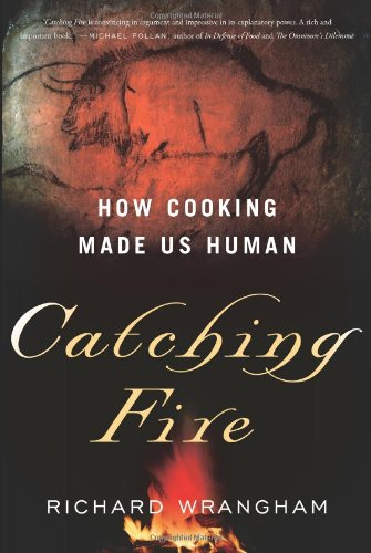 The best books on The Human Brain - Catching Fire: How Cooking Made Us Human by Richard Wrangham
