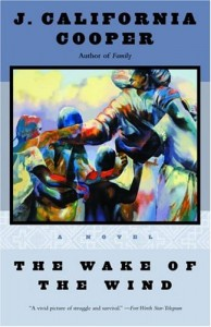 The best books on Texas - The Wake of the Wind by J California Cooper