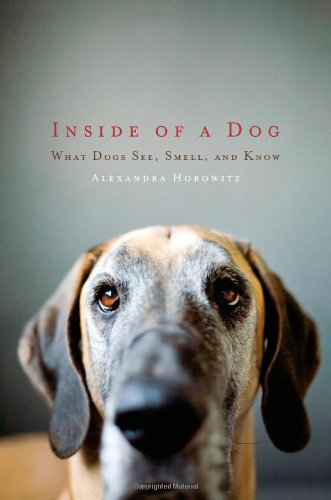 The best books on The Art of Observation - Inside of a Dog by Alexandra Horowitz