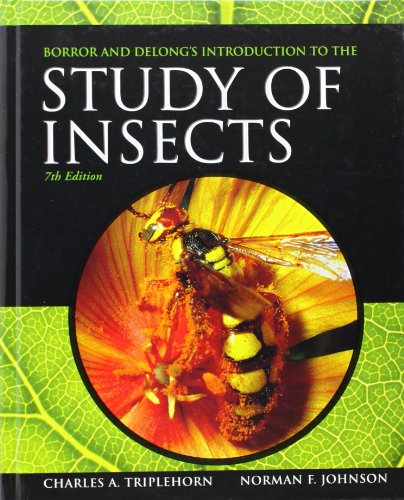 The best books on Bugs - Introduction to the Study of Insects by Charles Triplehorn and Norman F Johnson
