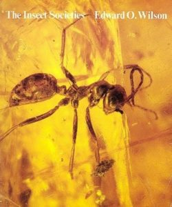 The best books on Bugs - The Insect Societies by Edward O. Wilson