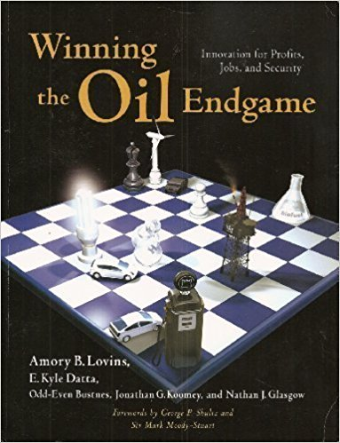 The best books on Clean Energy - Winning the Oil Endgame by Amory B Lovins, E Kyle Datta, Jonathan G Koomey and Nathan J Glasgow & Odd-Even Bustnes