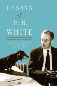 Adam Gopnik on his Favourite Essay Collections - Essays of E.B. White by E.B. White