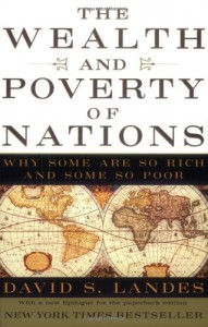 The best books on Economics in the Real World - The Wealth and Poverty of Nations by David S Landes