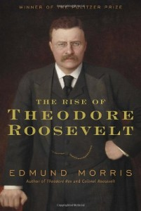 The best books on Why Economic History Matters - The Rise of Theodore Roosevelt by Edmund Morris
