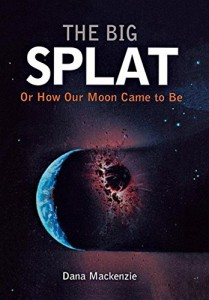 The best books on The Beauty and Fun of Mathematics - The Big Splat by Dana Mackenzie