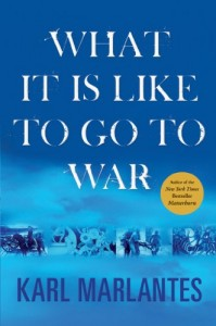 The Best Vietnam War Books - What It Is Like To Go To War by Karl Marlantes