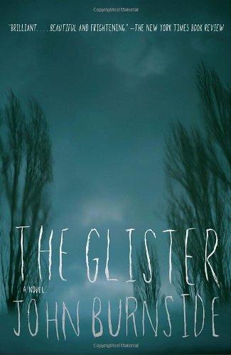 Irvine Welsh recommends the best Crime Novels - The Glister by John Burnside