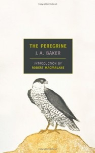 The best books on Wild Places - The Peregrine by JA Baker