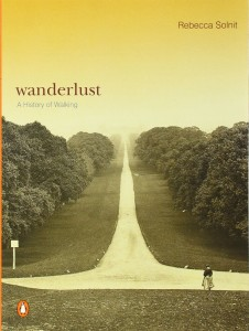 The best books on Myths of War - Wanderlust: A History of Walking by Rebecca Solnit