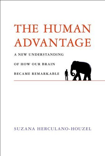 The best books on The Human Brain - The Human Advantage: A New Understanding of How Our Brain Became Remarkable by Suzana Herculano-Houzel