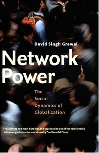 The best books on Geoeconomics - Network Power: The Social Dynamics of Globalization