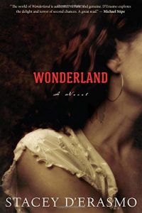 Kayla Rae Whitaker on Stories about Women Artists - Wonderland by Stacey D'Erasmo