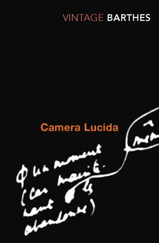 The best books on The Lives of Artists - Camera Lucida by Roland Barthes