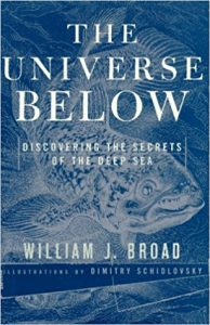 The best books on Life Below the Surface of the Earth - The Universe Below by William Broad