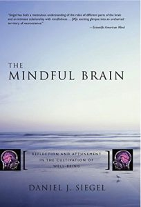The best books on Mindfulness - The Mindful Brain: Reflection and Attunement in the Cultivation of Well-Being by Daniel Siegel
