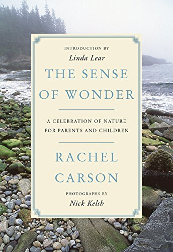 The best books on Science and Wonder - The Sense of Wonder by Rachel Carson