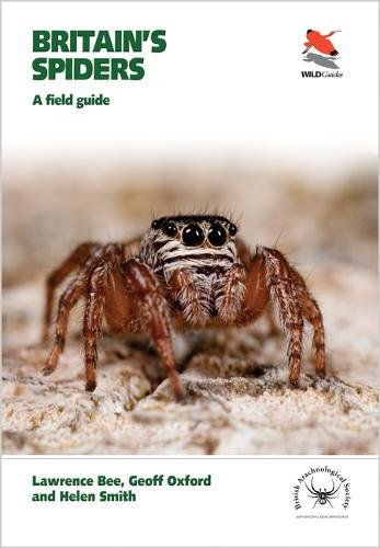 The best books on Spiders - Britain's Spiders: A Field Guide by Lawrence Bee & Lawrence Bee and Geoff Oxford and Helen Smith