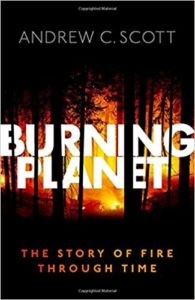 The best books on Evolution of the Earth - Burning Planet - The Story of Fire Through Time by Andrew Scott