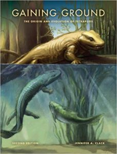 The best books on Evolution of the Earth - Gaining Ground by Jennifer Clack