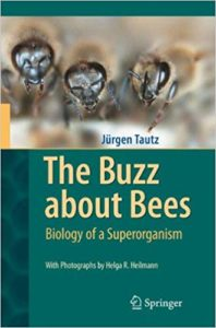 The best books on Honeybees - The Buzz About Bees by Jürgen Tautz